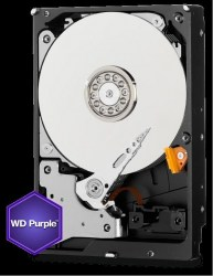 WD_1000_3.5_purple