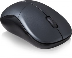 Rapoo_Wireless_Optical_Mouse_1090p_szara_10935_YF2.jpg